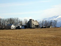 Matanuska Valley farm