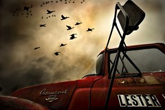 On the 1st of November (Xylonets) Tags: red painterly postprocessed color sepia photoshop truck one geese bravo perfect saveme farm year perspective save3 save7 save8 100v10f save save2 save9 save4 500v50f americana save5 save6 cinematic gnse loadstar1600