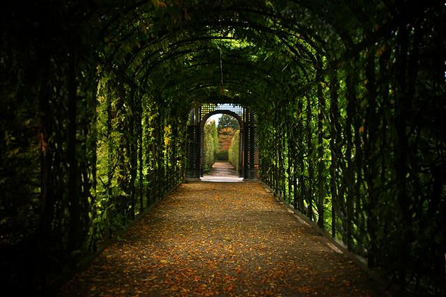 Schonbrunn Garden - Vienna, Austria