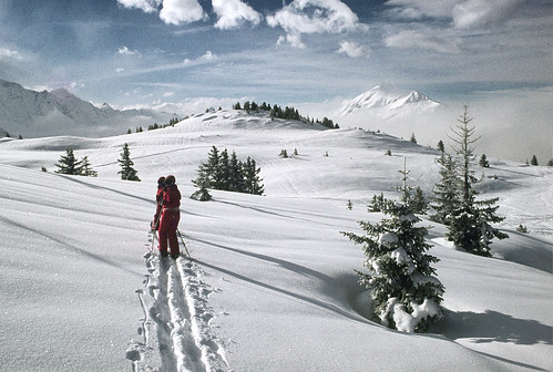 Ski de fond por Alain Bachellier.