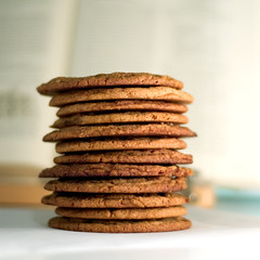 Molasses-Spice cookies (ilmungo) Tags: food tower cooking kitchen cookies topv111 yummy topv555 topv333 soft topv1111 chewy topv999 delicious spices topv777 oversized baked molasses fsftsblog