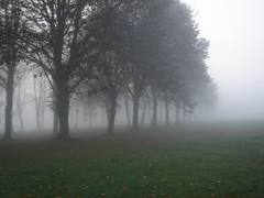 Tree's in Mist (Hobgoblin's) Tags: wood autumn trees winter cloud mist college ice grass leaves fog clouds golf grey path avenue radley
