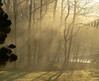 Early Morning Fog (dee_r) Tags: morning light mist fog sunrise golden bravo kkfav