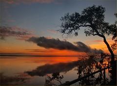 Sunrise - Niger River Amazon (Sam's Exotic Travels) Tags: brazil rain brasil niger forest sunrise river amazon sam quality sams travelphotos specland specnature samsays samsexotictravelphotos exotictravelphotos samsayscom