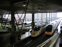 AVE trainsets at Madrid Atocha (Sean Munson) Tags: madrid station speed train spain europe rail trainstation ave atocha renfe highspeedtrain highspeedrail geo:lat=40405658 geo:lon=369006 dopplr:explore=wdl1