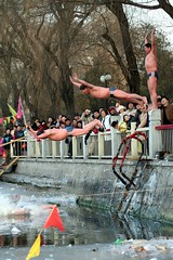 Frozen Flop (China Chas) Tags: china people cold ice water photoshop singing beijing diving chinesenewyear 2006 fv5 montage swimmer splash  houhai speedos lunarnewyear springfestival bellyflop