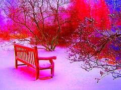 Bench by Blueberry Pond Redux (CountryDreaming) Tags: trees winter ohio snow painterly art bench surrealism surreal surrealist benches