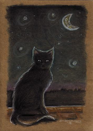 cat under moon