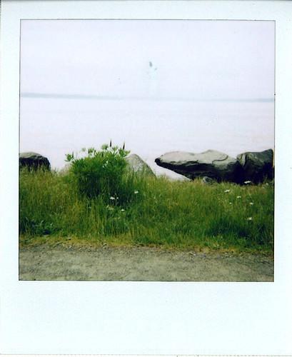 Discovery Polaroid