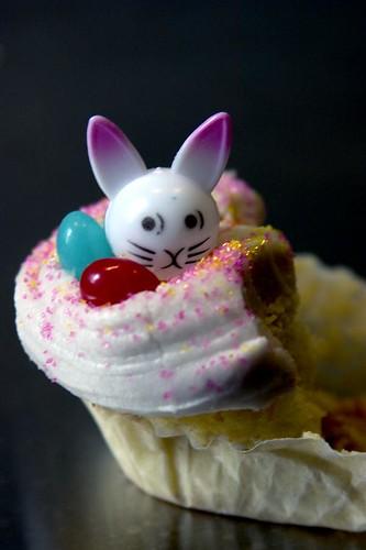 oh, dear, someone ate up the paranoid bunny's habitat