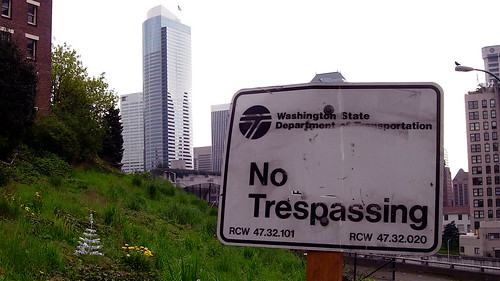 tresspassing tree