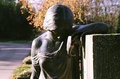 Luz matinal (tessponte) Tags: cemitrio pragfriedhof estugarda