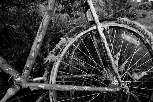 Bike lock not required