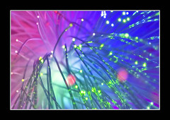 Colorful Lights (AHMED...) Tags: pakistan abstract macro colors lights colorful ahmed sind catchy sindh muhammad mehrabpur
