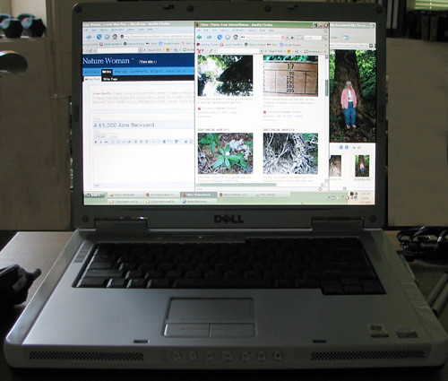 Pam-NatureWoman-workspace_m