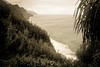 Copy of Kauai b&w26 (chiarina2016) Tags: kauai hawaii island beach monotone blackandwhite chiarinaloggia stormyseas waves trails hiking surf kalalautrail trail hike napali coast