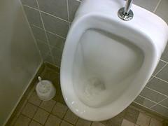 Toilette sauberhalten