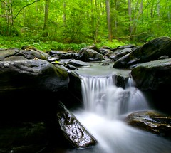 Long Exposure of Long Hope Creek (almassengale) Tags: longexposure fish mountains water creek nc stream sony tag south northcarolina trout appalachians movingwater flowingwater ashecounty sonya100 superaplus superhearts