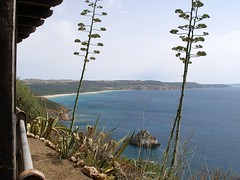 Nebida, Sardinien - Blick vom Passeggiata panoramica di Nebida auf den Spiaggia di Fontanamare (SW) (cd.berlin) Tags: sardinien sardigna sardegna sardinia italien italia italy 2008 spiaggia fontanamare panoramica nebida cdberlin