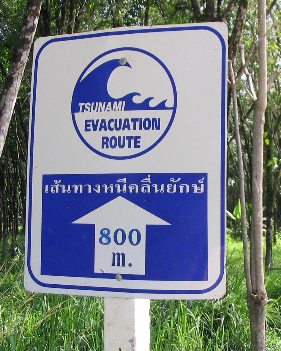 Tsunami 800m