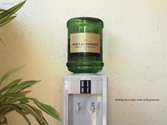 champagne (mpbc1970) Tags: blog luxo bebida