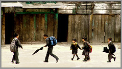 A Gang of young buddies (Sukanto Debnath) Tags: girls india boys kids umbrella sony schoolchildren f828 sikkim blueribbonwinner debnath anawesomeshot ravagla sukanto sukantodebnath