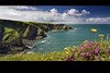 "Port Isaac (jasontheaker) Tags: sea cornwall heather turquoise atlantic landscapephotography ""jasontheaker"" ""gridreference"" ""portisaac"""