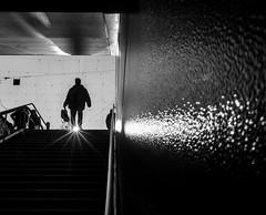 """If you be my star, I will be your sky..."" (Thomas Leuthard) Tags: thomasleuthard streetfotografie"