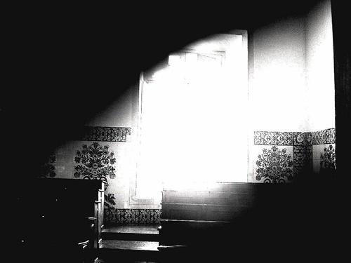 Imag0027© fatima ribeiro2007