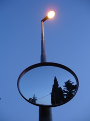 zypresse von hinten (me_maya) Tags: sunset dawn mirror spiegel cypress lantern dmmerung laterne blueness duino scherenschnitt zypresse