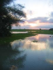 ,,        (Missy | Qatar) Tags: desert gone forever roda qatar qtr bnt g6r alrayya