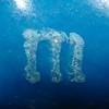 m&m m