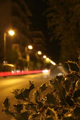 Bologna_Marco_12