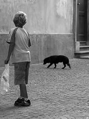 Toso_Federico_09