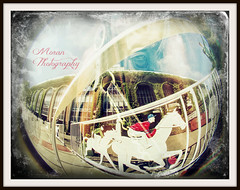 Multiple Exposure Collage (EASY GOER) Tags: horses horse ny newyork sports race canon track running racing 5d athletes races thoroughbred equine markiii