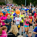 "Stadsloppet2015webb (29 av 117) • <a style=""font-size:0.8em;"" href=""http://www.flickr.com/photos/76105472@N03/18753491206/"" target=""_blank"">View on Flickr</a>"