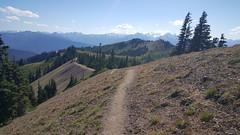 Klahhane Ridge Trail in Olympic NP