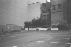 ottawa summer 22 (maxlabor) Tags: blackandwhite ontario canada film iso3200 ottawa 35mmfilm ilford yashicat4super ilforddelta negativefilm analoguephotography