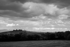 A row of trees (martino.pizzol) Tags: trees blackandwhite italy clouds row hills tuscany siena toscana valdorcia cloudscape
