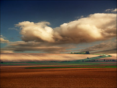 Fields (Katarina 2353) Tags: sky cloud film field clouds landscape photography photo spring image outdoor path valley fields katarina2353 serbiainspired
