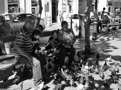 Grandma...Help Me!! (César Vega-Lassalle) Tags: olympus omd leicadg 25mmf14 plazadearmas oldsanjuan puertorico microfourthirds monochrome m43