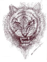 tigre a lapicero (ivanutrera) Tags: draw dibujo drawing dibujoalapicero wildlife wild sketch sketching tigre tiger lapicero boligrafo animal felino dibujoaboligrafo