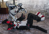 _DSC2013 (Acrufox) Tags: midwest furfest 2016 furry convention december hyatt regency ohare rosemont chicago illinois acrufox fursuit fursuiting mff2016 menagerie fursuitsaturday
