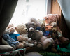 Window Sill Meeting (HTBT) (13skies) Tags: htbt happyteddybeartuesday teddybeartuesday bears windowlight window sill sitting fun busy sunlight basking group creative manic frenzy sony sonyalpha99 a99 curtains