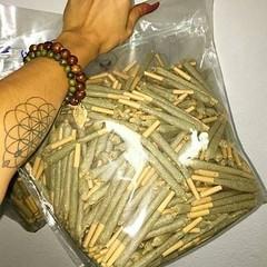 Got Joints? 💨💨💨 @doudaclubistry does! #wakenbake #joints #kusharmy #kush #stonersonly #weedporn #wakeandbake #weedleaf #crackingnugs #hightimesmagazine #weshouldsmoke #ffourtwenty #swed #thehighsociety #smokeweed #thc #maryjane #cannabis #p (tweedledoob) Tags: cannabis medival marijuana canadian stoners high times weed marihuana ganja joints tweedledoob