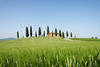 Farmhouse with cypress trees and wheat in Tuscany (iPics Photography) Tags: farmhouse cypress tree cypresses house agriturismo tuscany wheat agriculture grain crops field trees cipressini valdorcia landscape home vacation tuscan villa pienza farm hill toscana orcia italy valdâorcia