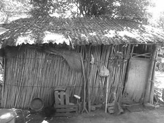 CASA DE PALOS TRADICIONALES EN LOS PUEBLOS TEPEXCO, PUEBLA. (PEDRO RGB) Tags: choza casa photographer puebla pedro rgb de tepexco and black blanco y negro white antigua prehispanic prehispanica nikon