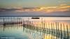 l'Albufera sunset III (Ignacio Ferre) Tags: agua albufera albuferanaturalpark l´albufera barco barca atardecer sunset españa valencia landscape boat fishing lake lago nikon net red pesca spain water paisaje