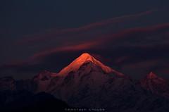 Panchachuli - 2 (_Amritash_) Tags: panchachuli panchachuli2 munsyari munsiari uttarakhand india himalayas sunset sunsetlights sunsetcolors sunsetinhimalayas lastlight glowingpeak snowcappedmountains पंचचूली मुनसयारी 30°125180°2539