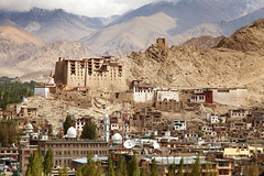 Ville de Leh et son palais, Ladakh (Voyages Lambert) Tags: lehmonastery travel tourism buildingexterior tibetanculture gompa cloister praying buddha buddhism religion large majestic history spirituality ancient old famousplace architecture urbanscene tibet lehvillage ladakhregion jammuandkashmir india asia plateau himalayas mountain hill house monastery templebuilding stupa palace castle monument fort tower builtstructure cityscape city town keep listed himal